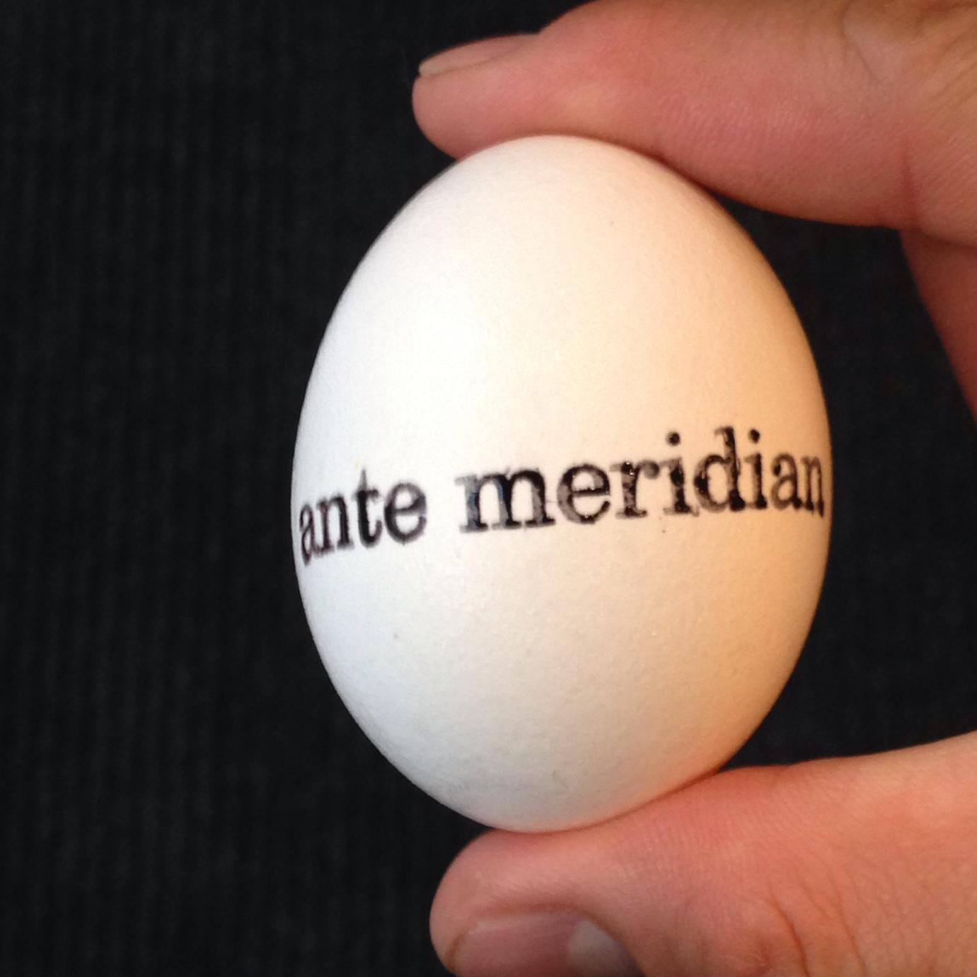 Ante Meridian